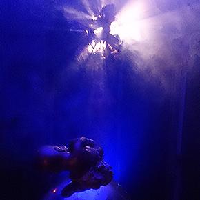 Performance de ChamiLópez.